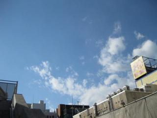 東洋医学理に適っている 鍼灸(はりきゅう)治療院 東京都葛飾区東新小岩 新小岩 鍼灸