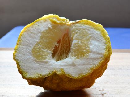 オニ柚子2