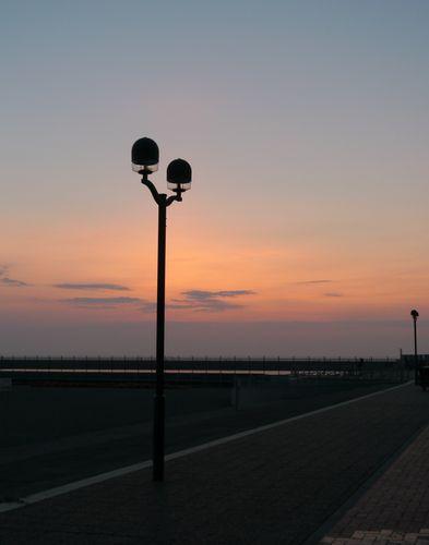 P1160654.jpg