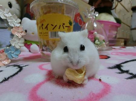 デザート?