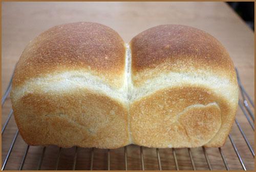 ソルダム酵母のパン