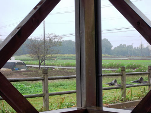 雨のログハウス (3)