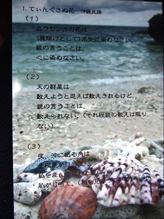 P1012980 てぃんさぐぬ花