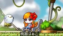 桜のアイドルはぁこちゃん