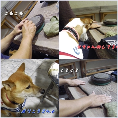 page_201310152118377ed.jpg