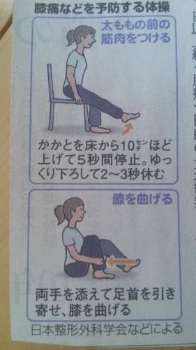 ひざ新聞2