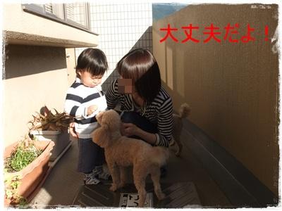 2013_0507_165201-DSCF9115 - コピー (2)