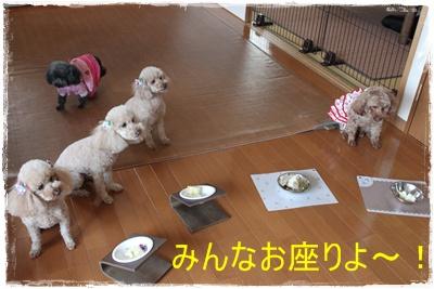 2013_0428_142748-IMG_9929.jpg