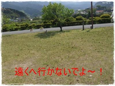 2013_0503_143439-DSCF9003_20130507132034.jpg