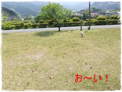 2013_0503_143532-DSCF9004.jpg