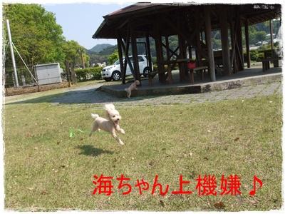 2013_0503_143718-DSCF9016.jpg