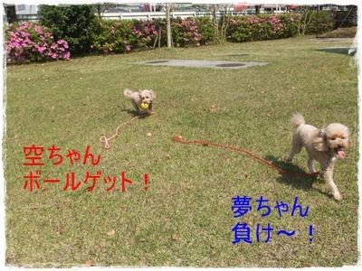 2013_0503_144031-DSCF9033.jpg