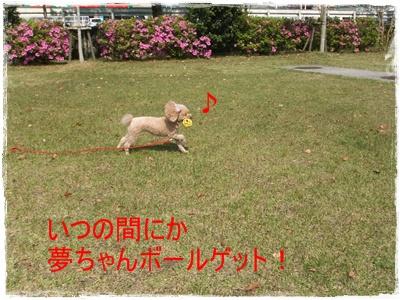 2013_0503_144046-DSCF9035.jpg