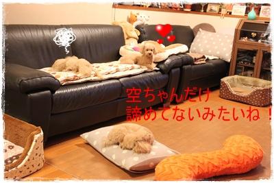 2013_0521_230310-IMG_0120.jpg