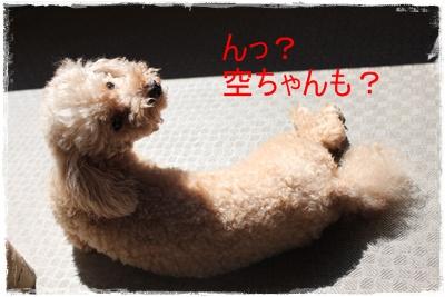 2013_0716_101820-IMG_0696.jpg