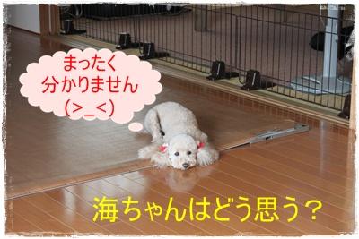 2013_0915_134653-IMG_1161.jpg