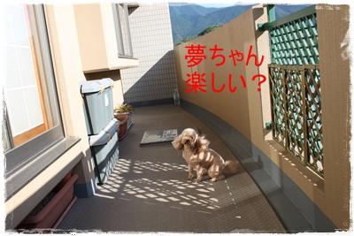 2013_0918_164012-IMG_1220.jpg