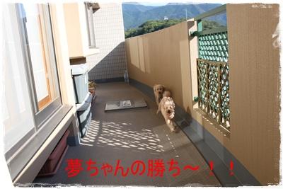 2013_0918_164208-IMG_1226.jpg