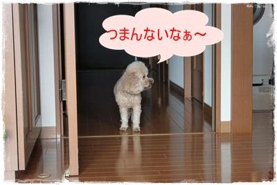 2013_0930_084006-IMG_1261.jpg
