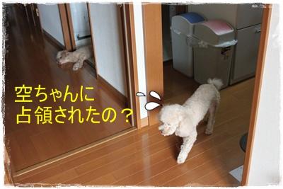2013_1003_110457-IMG_1298.jpg