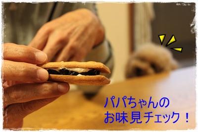 2013_1020_175318-IMG_1364.jpg