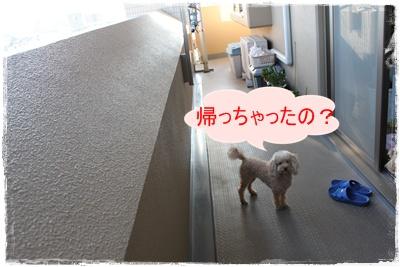 2013_1027_165158-IMG_1430.jpg