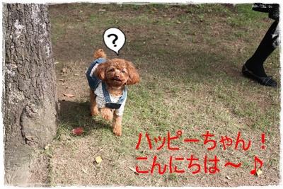 2013_1031_135812-IMG_1451.jpg
