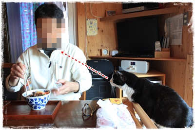 2013_1101_143512-IMG_1594.jpg
