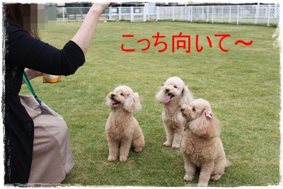 2013_1102_130120-IMG_1671.jpg