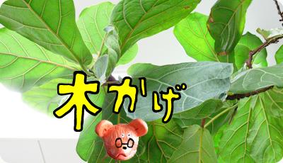 2013_0415_05.jpg