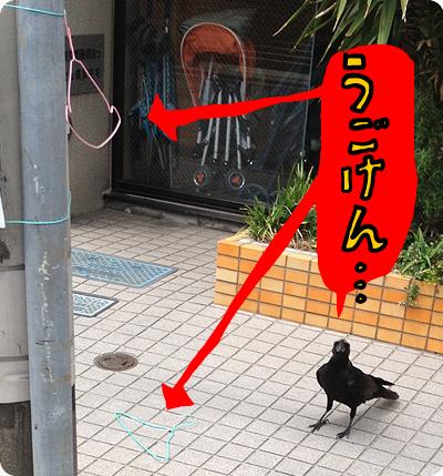 2013_0528_05.jpg