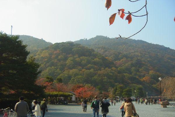 嵐山20131116