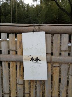篠山250127_3_21