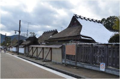篠山250127_3_03