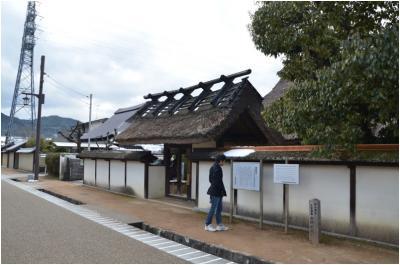 篠山250127_3_11