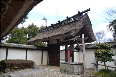 篠山250127_3_15