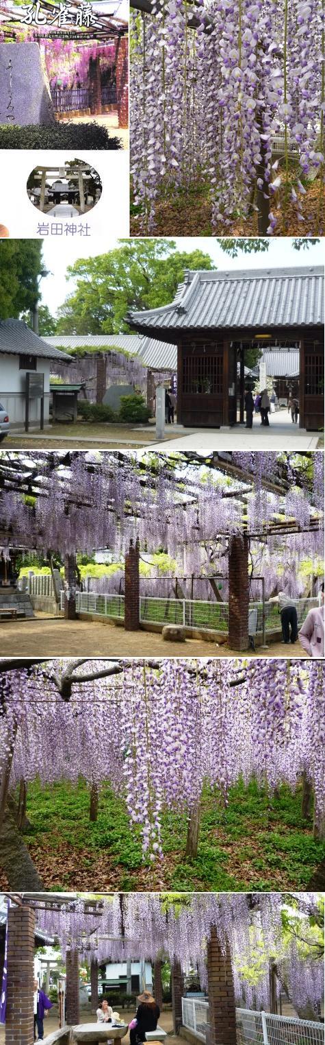 a岩田神社P1230467