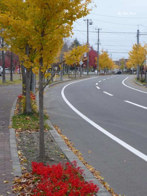 2014秋