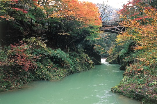 こおろぎ橋 2位