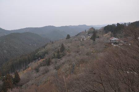 yosino009_R.jpg