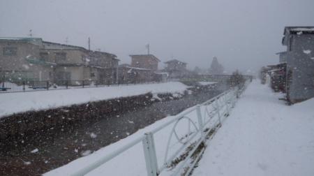 雪もさもさ みに