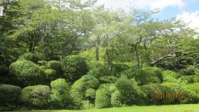 三河屋の庭