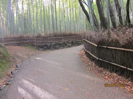 IMG_1579嵐山.jpg