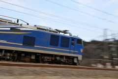 EF510-500_272