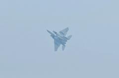 Hyakuri AB_F-15J_325