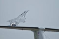 Hyakuri AB_F-15J_338
