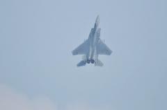 Hyakuri AB_F-15J_329