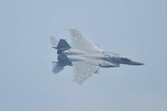 Hyakuri AB_F-15J_330