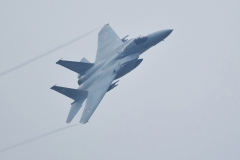 Hyakuri AB_F-15J_3301