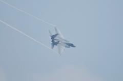 Hyakuri AB_F-15J_332